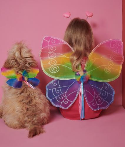 Race for Life Rainbow Dog Wings